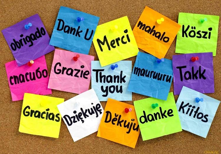 «А это же очень важно, когда кто-то говорит тебе «спасибо»!»