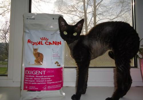 Canin, Royal Canin