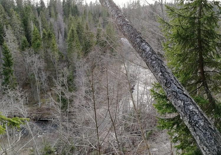 Походные заметки: пещера Велнала, Доломитовый обрыв и пещера большая Эллите
