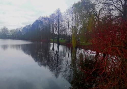Осенние прогулки: в поисках новой болотной тропы