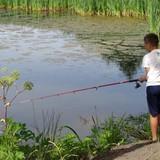 ловили рыбку