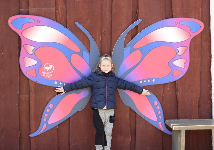 Дом бабочек в Тервете