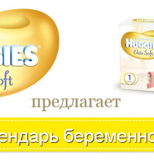 Календарь беременности Маминого Клуба: следи неделя за неделей!