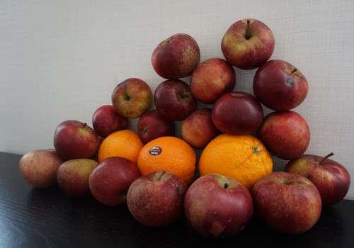 Кристина: Птички, яблоки