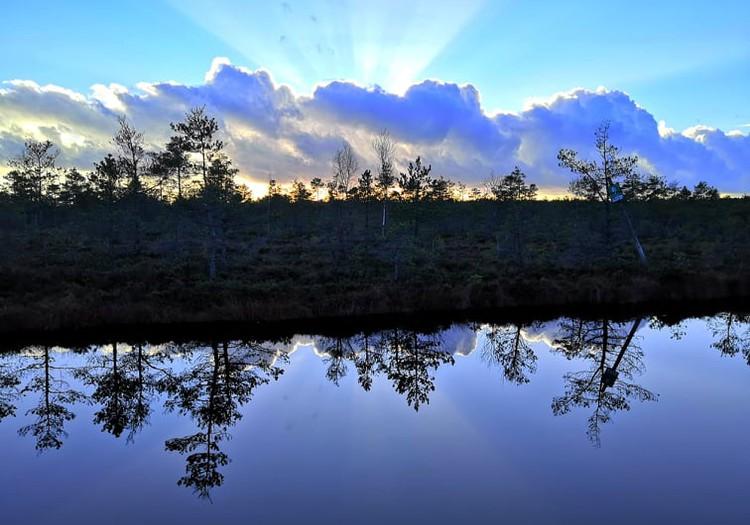 Осенние прогулки: пешеходные мосты Ценского болота
