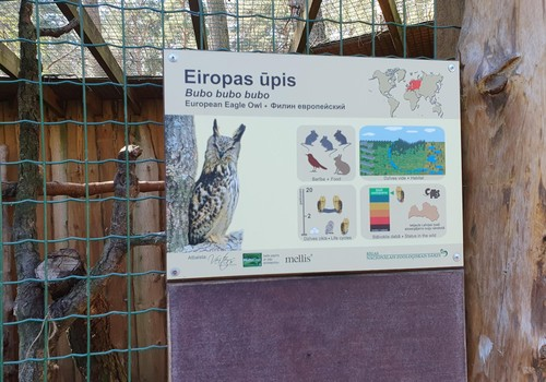Рижский зоо на фоне Балтии: хорошо, но дорого