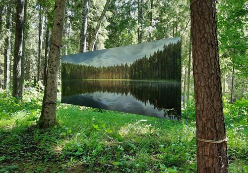 Valguma pasaule - босоногая и художественная тропы