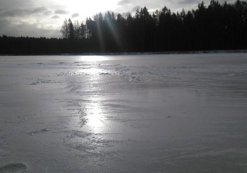 """Погода шепчет """"зима-весна"""". Вы сегодня гуляете?"""