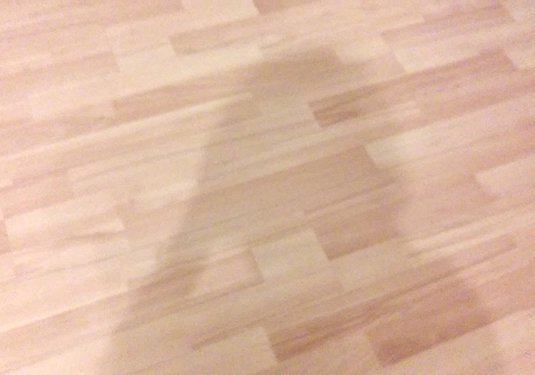 АРТУР: Двухголовая тень