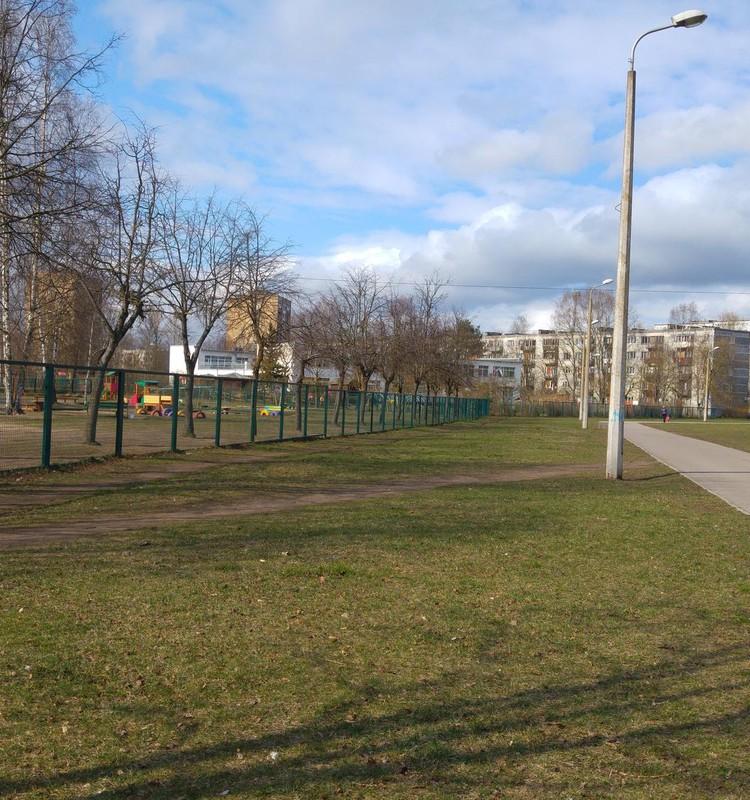 Выгул собак рядом с детским садом: проблема или паранойя?