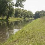 Кстати, река Шингарка очень живописная. Но помимо всего прочего, именно её водами питаются петергофские фонтаны.