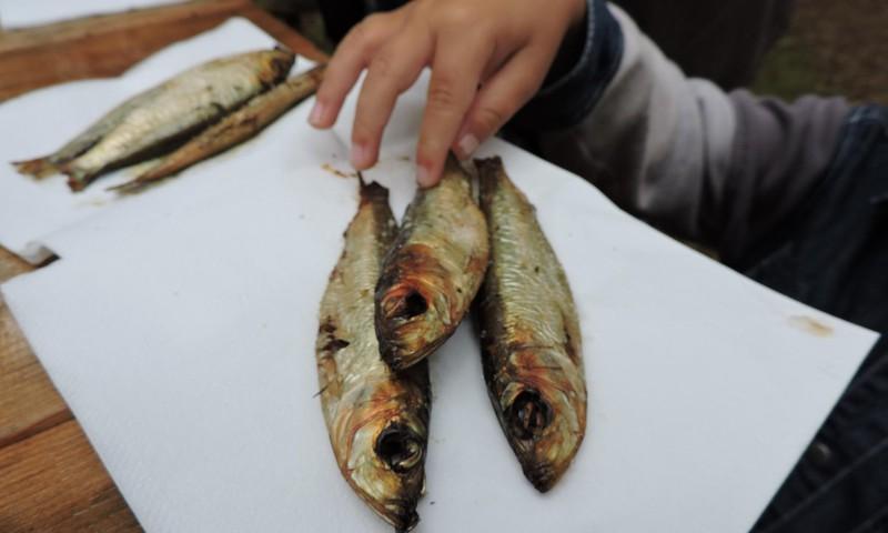 Рыбные дни в Юрмальском этнографическом музее