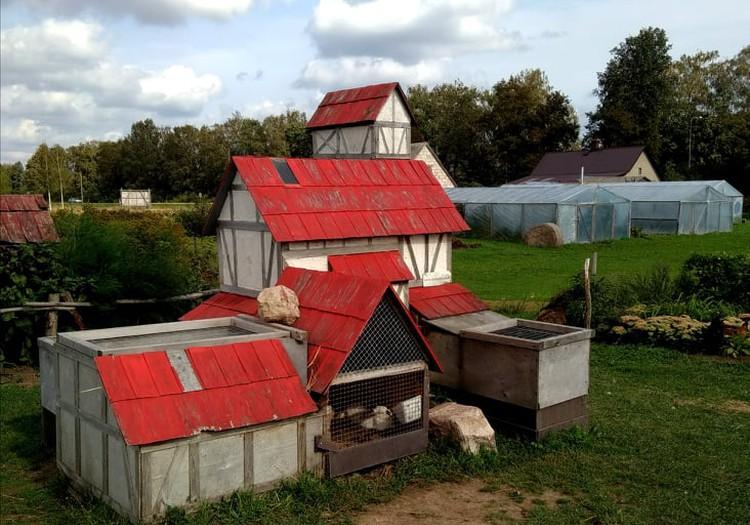 Ох уж эти мини зоопарки: Trušu Pilsētiņa (Кроличий городок)
