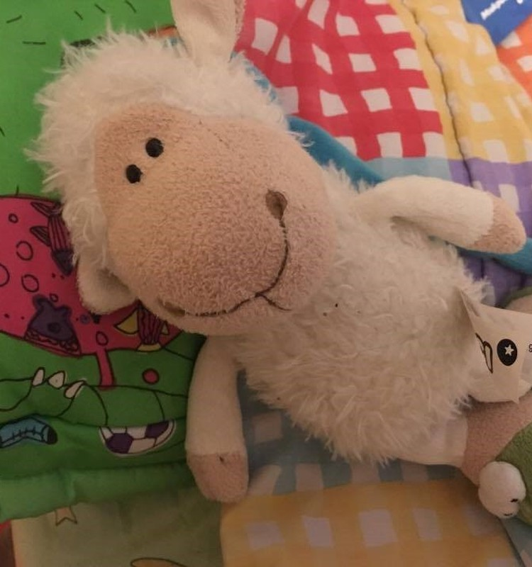 Тимур: Посчитаем овечек