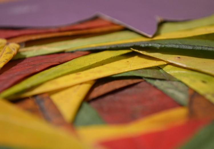 Наш кленовый лист - буйство осенних красок!