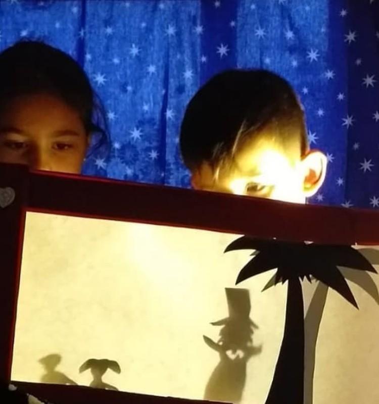 Театр теней дома