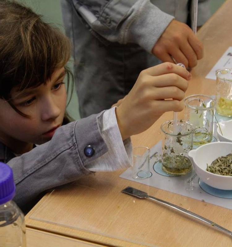 "GUDRА RĪGA: приглашаем на новую программу ""Науки о еде""!"