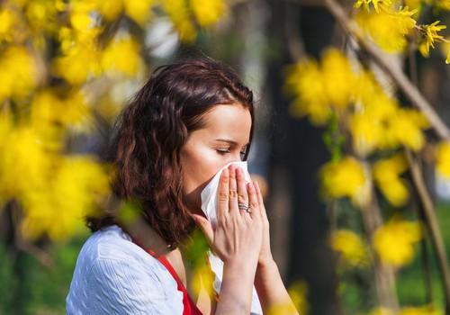 Бедствие весны: что делать, если у вас аллергия на пыльцу растений?