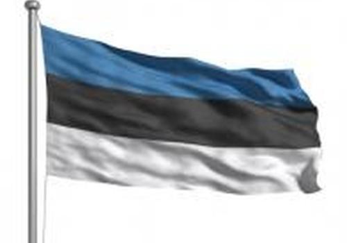 В Эстонии вырастут родительские пособия