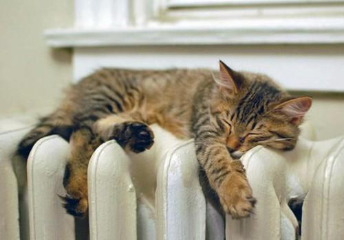 ДИСКУССИЯ: Топить или не топить, вот в чем вопрос...