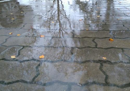Как вы проводите воскресный дождливый день?