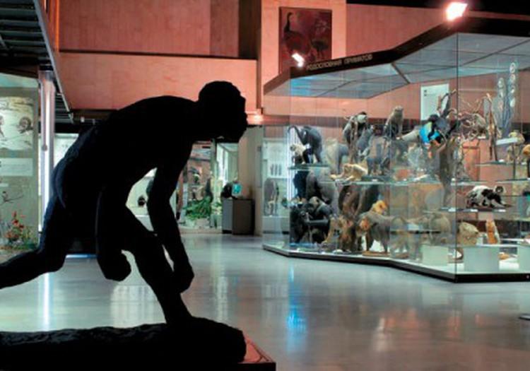 Когда пойти в музей бесплатно