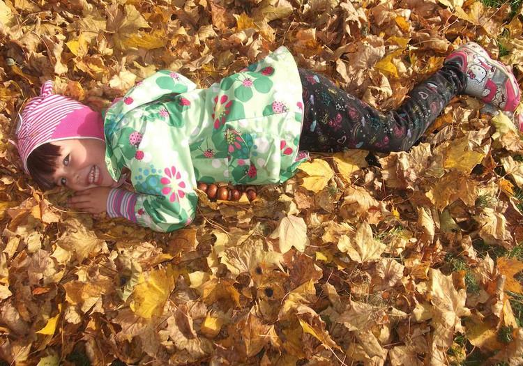 Осенние поделки: СОВА