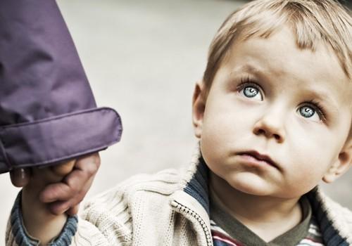 Цитата дня: почему мы верим чужим людям больше, чем собственным детям?