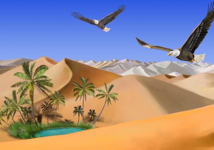 """Диана. № 35. """"Нехочуха"""" в пустыне"""