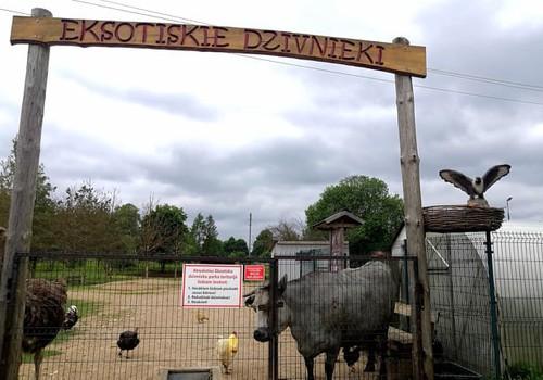 Лето, ах лето: ох уж эти мини зоопарки – парк экзотических животных в Дундаге
