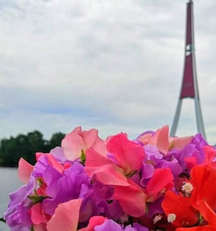 Освежающая прогулка по Даугаве: кораблик «VECRĪGA» приглашает в гости