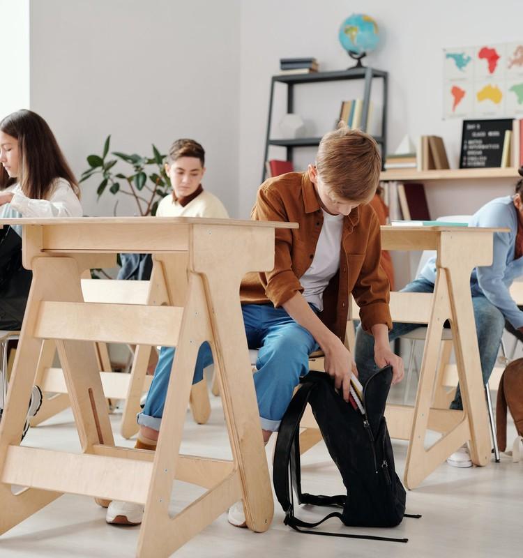 Шуплинска призывает организовать три недели очного обучения для всех учеников