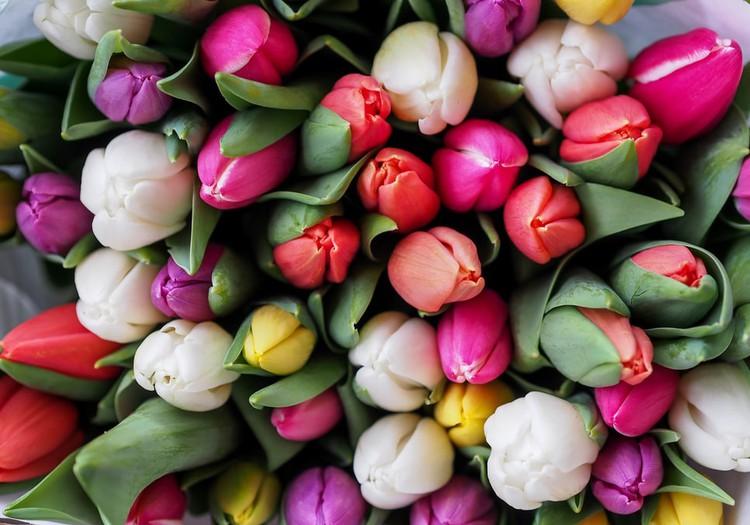 Поздравляем с 8 марта, дорогие мамы!