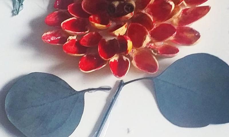Цветочек из фисташек