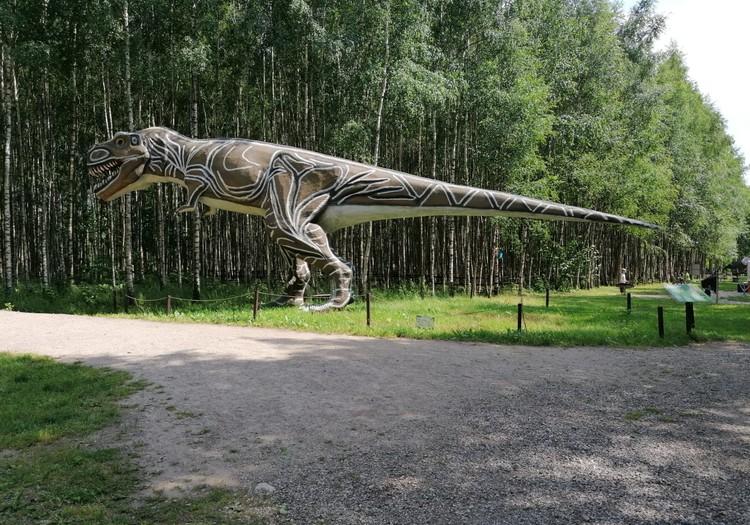 Паланга - парк динозавров в районе усадьбы Радайляй