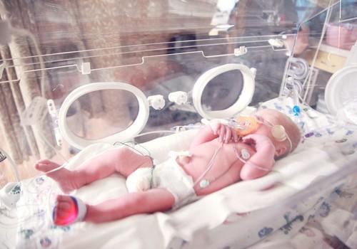 Формируем эмоциональную связь с преждевременно рождённым малышом. Разговор с Диной Крузе