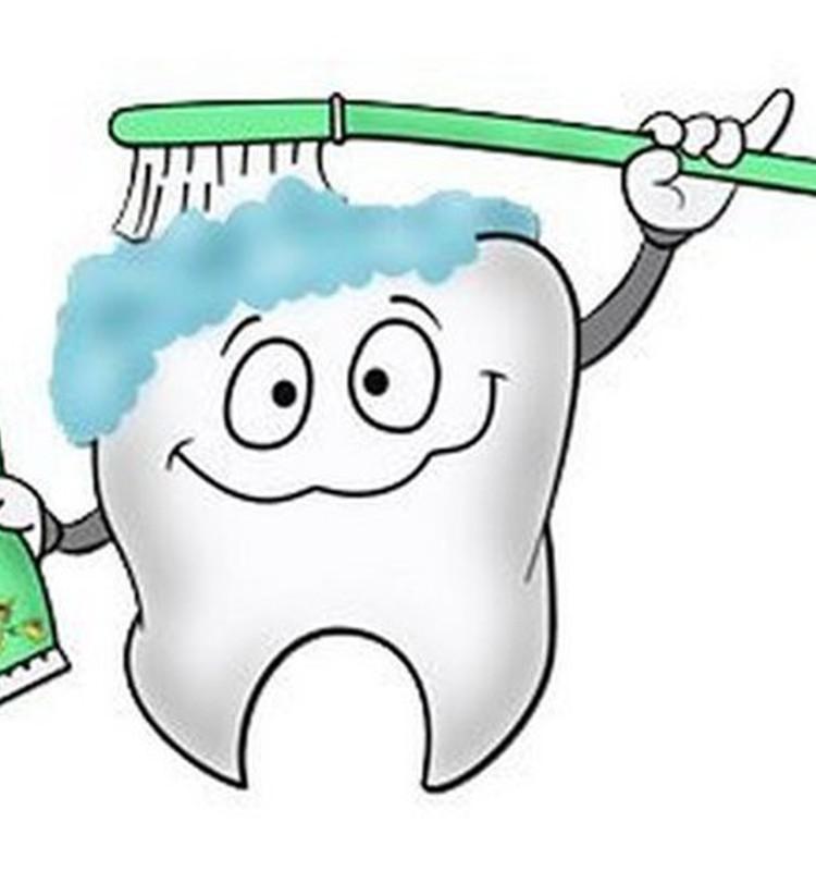 Вика: Зубастик чистится пастой, щёткой и водой