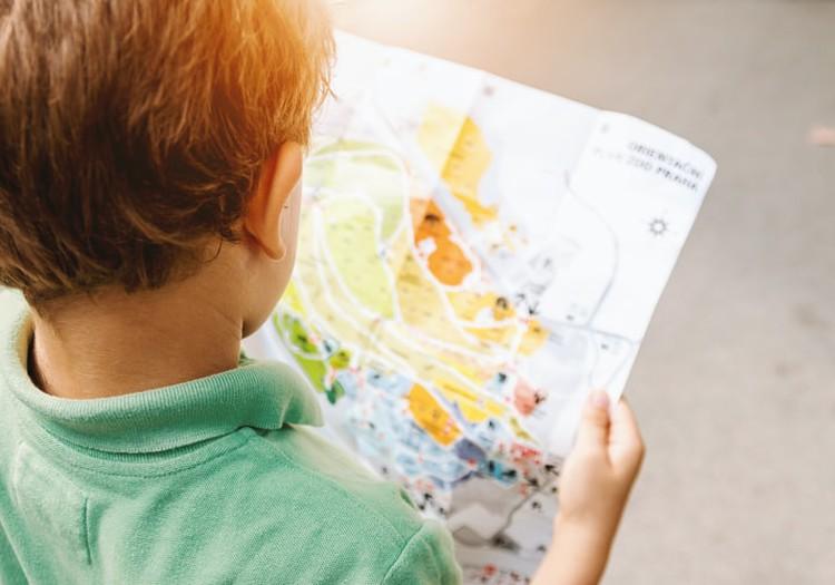 Возвращаемся в школы и детские сады: как укрепить иммунитет?