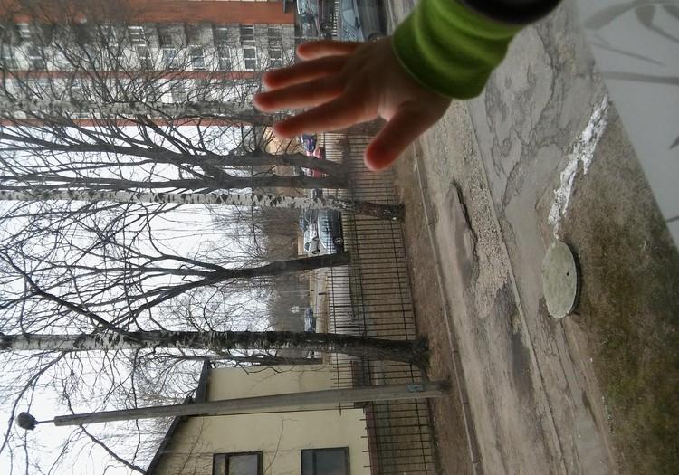 Наш вид из окна