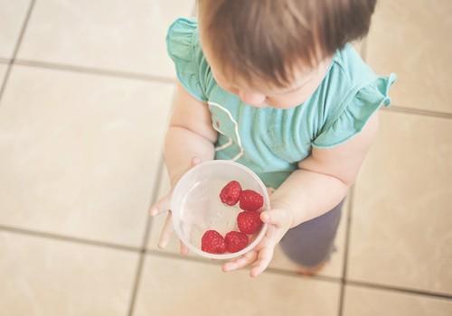 Лето в разгаре: таблица введения ягод в прикорм малыша