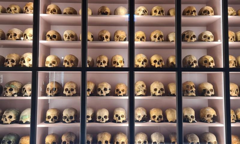 Латвийские каникулы: Музей анатомии РСУ (впечатлительным не смотреть)