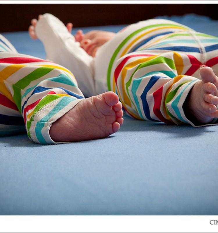 Двойняшки. История в картинках
