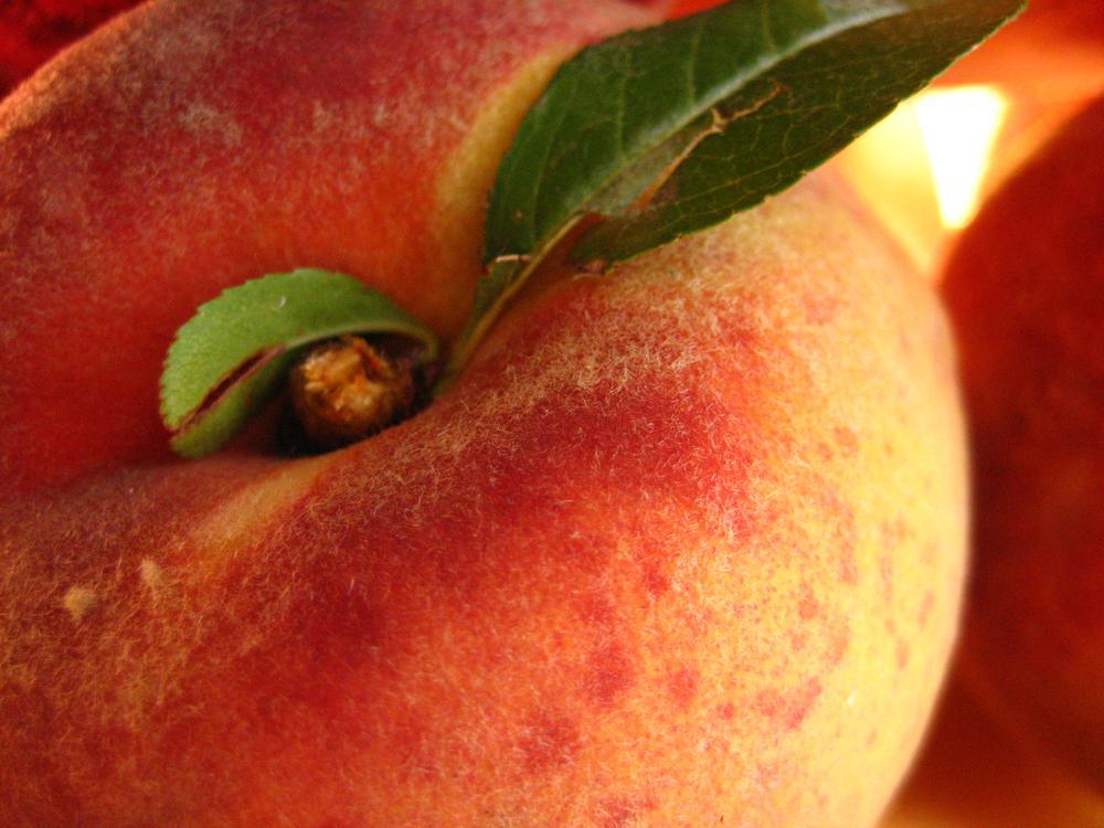 Фото красивых женских персиков