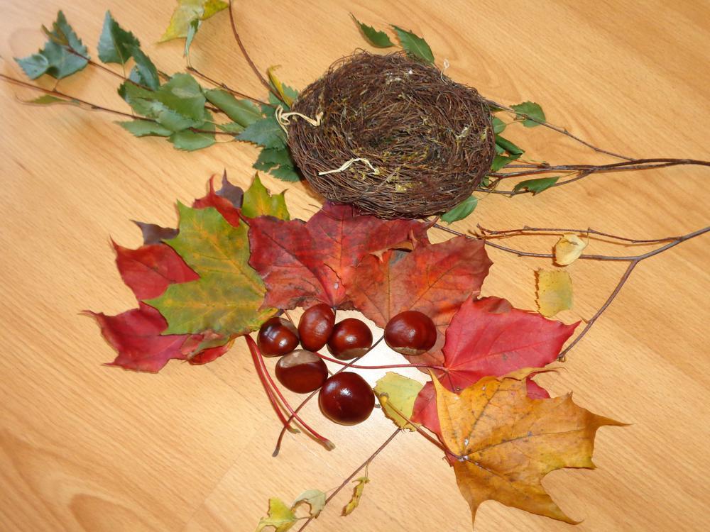 Поделки с каштанами и листьями 208