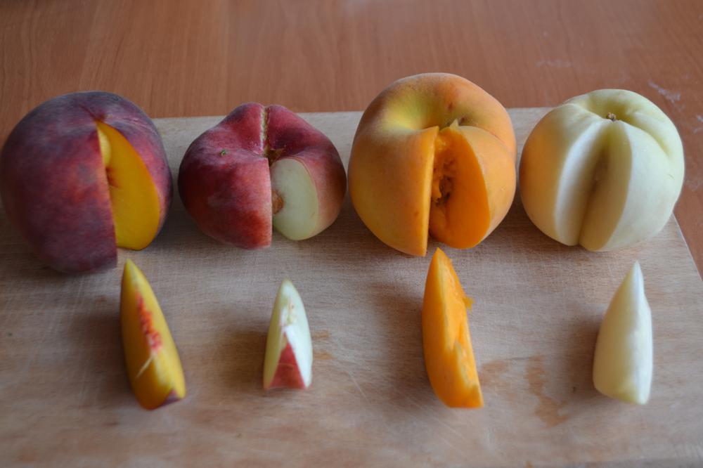 персики в трусика
